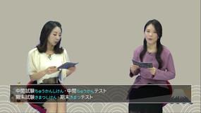 [[ videos[30].title ]]